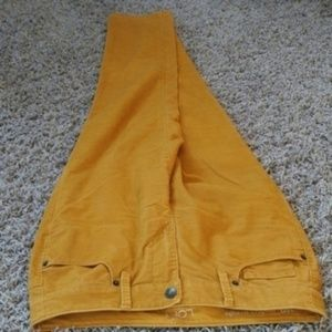 [LOFT] Modern Straight Fine Corduroy Jean